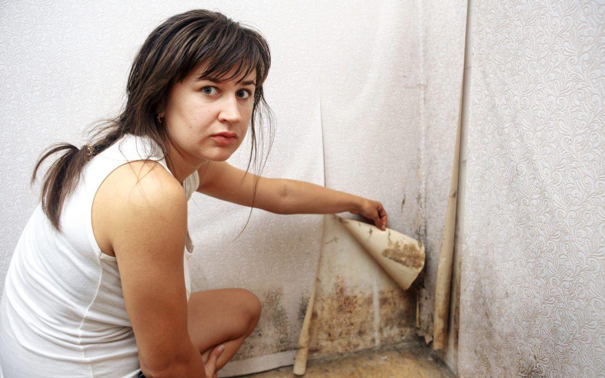 Woman peeling back wallpaper to reveal black mold