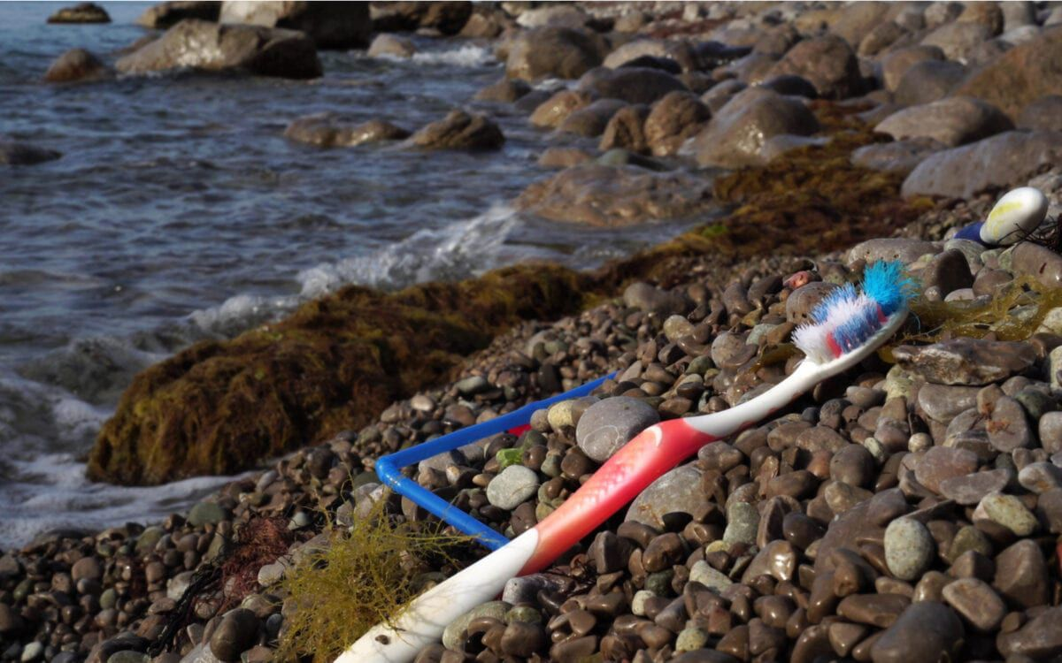 Picture of Toothbrush on Beach